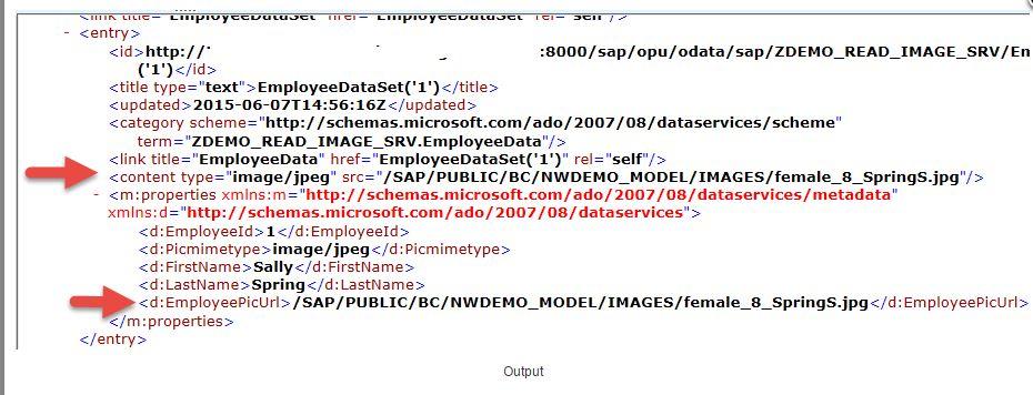 How to get image through SAP Netweaver Gateway - SAP ABAP