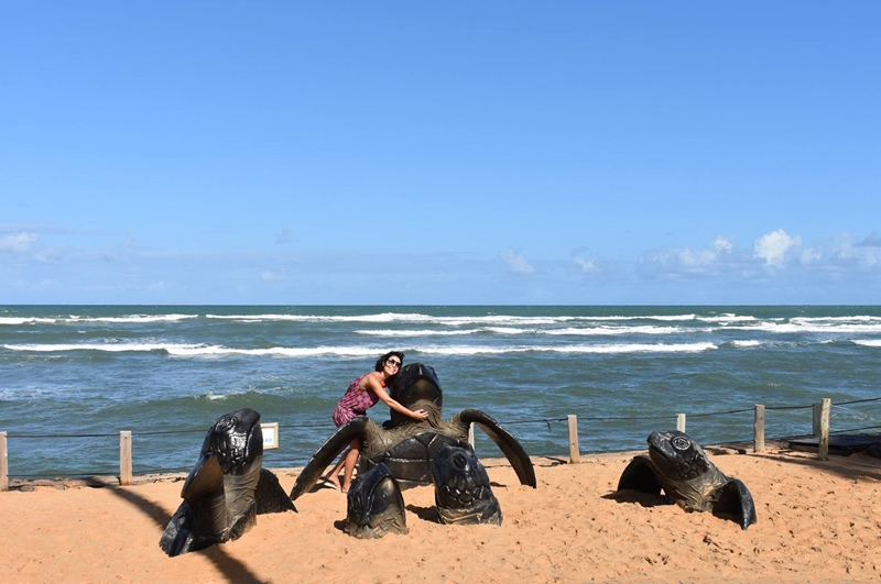 O que fazer na Praia do Forte