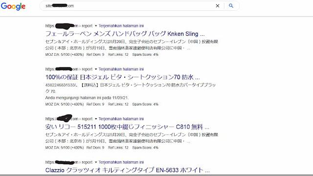 Website Berubah Jadi Bahasa Jepang di Serp