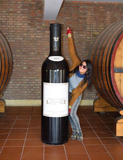 mulher jovem de cabelo preto, pele branca. Vestida de jaqueta de camurça marron e luvas vermelhas em uma vinicola com barris de madeira e um vilho de 1 metro