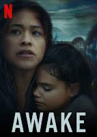 Awake 2021 Dual Audio Hindi 720p HDRip