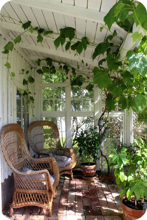 Greenhouse With Wicker Chairs