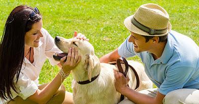 8 estereotipos de personas amantes de los perros que son totalmente ciertos