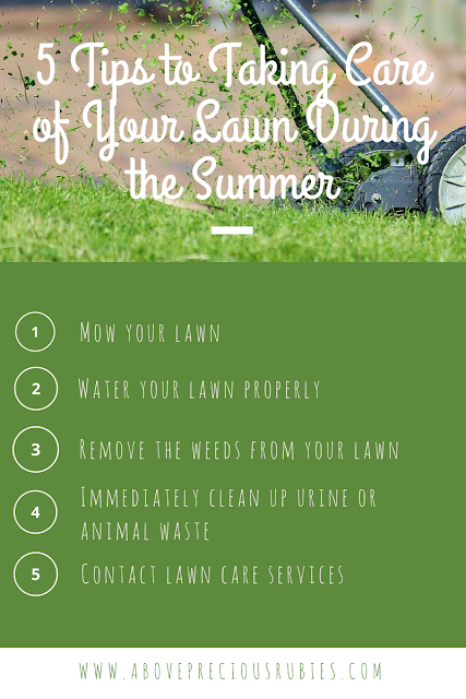 5 Tips to Taking Care of Your Lawn During the Summer