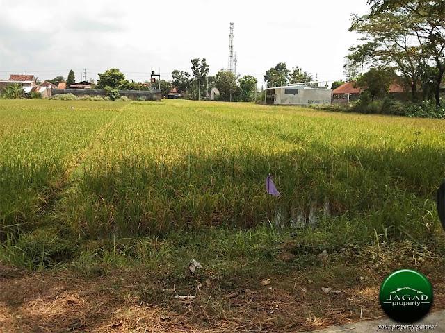 Tanah Sawah jalan Parangtritis Km 7