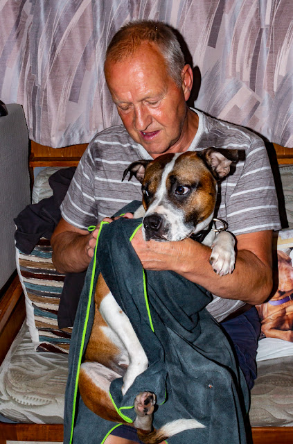 Photo of Phil drying Ruby after her walk on Sunday evening