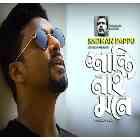 Shanti Nai Mone Mp3 Song Lyrics (শান্তি নাই মনে) by Sadman Pappu