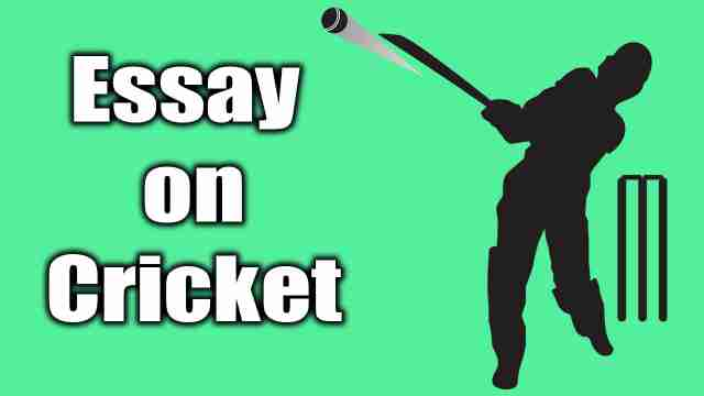 Image of a batsman used for english essay on cricket