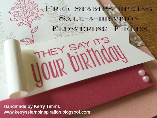 Cake Making Classes Gloucester : Stampin spiration: Flowering Fields