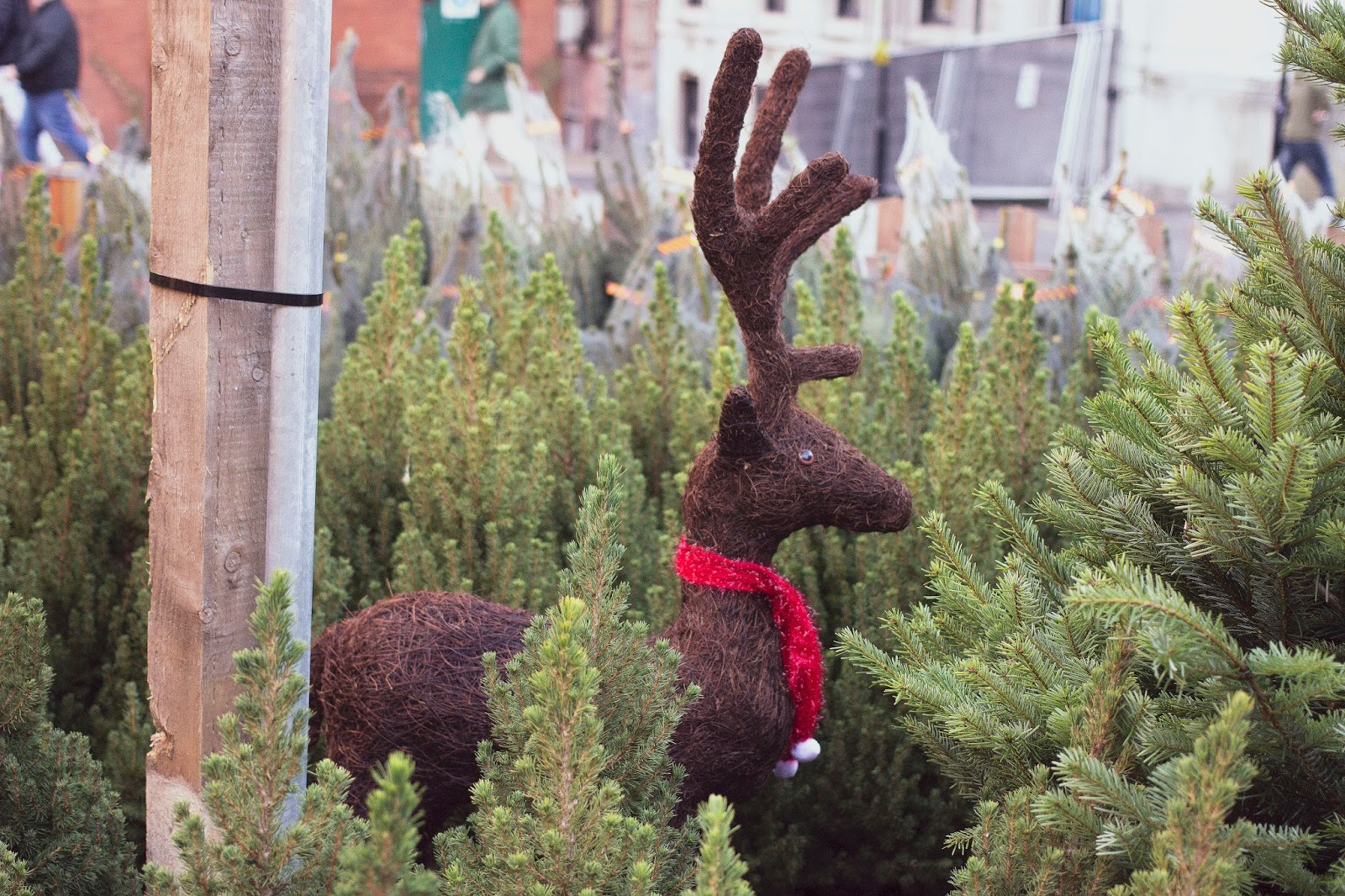 Rudolph the Red Nosed Reindeer, Manchester, Manchester Christmas Market, Katie Writes,