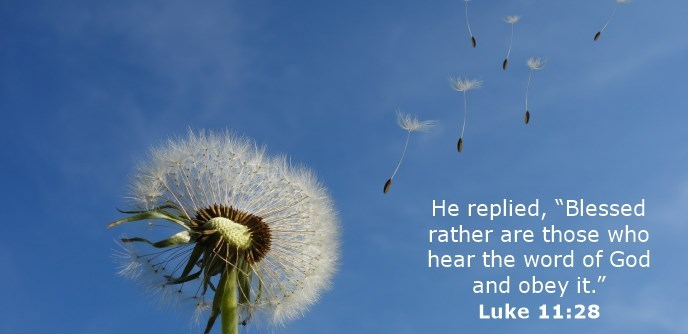 """He replied, """"Blessed rather are those who hear the word of God and obey it."""""""