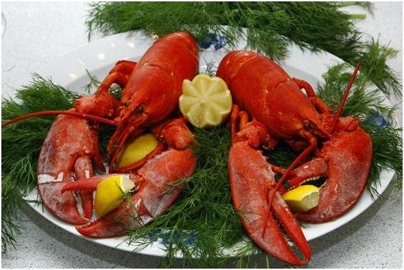 13 Manfaat Lobster untuk Kesehatan