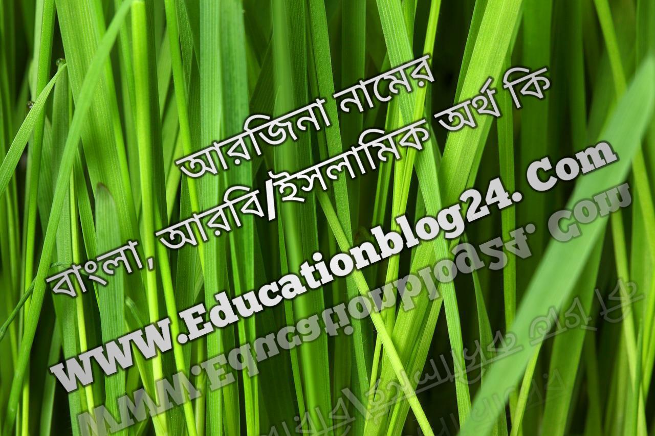 Arjina name meaning in Bengali, আরজিনা নামের অর্থ কি, আরজিনা নামের বাংলা অর্থ কি, আরজিনা নামের ইসলামিক অর্থ কি, আরজিনা কি ইসলামিক /আরবি নাম