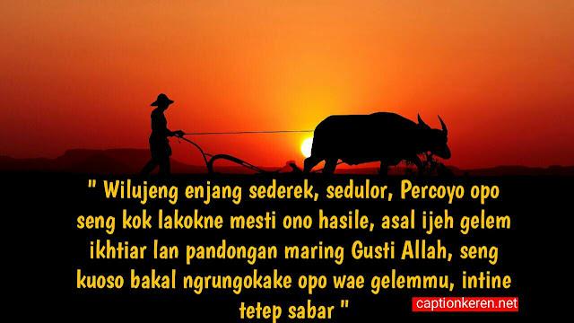 Bahasa Jawa Gambar Selamat Pagi Lucu Kata Kata Selamat Pagi Bahasa Jawa