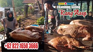 Kambing Guling di Bandung Paling Murah, kambing guling di bandung, kambing guling bandung, kambing guling,
