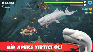 Hungry Shark Evolution V7.5.8 MOD APK – MEGA HİLELİ