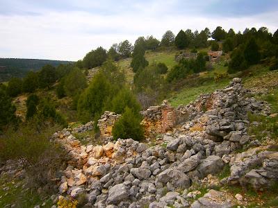 El Rento de los Agallanes (Campillos Sierra)