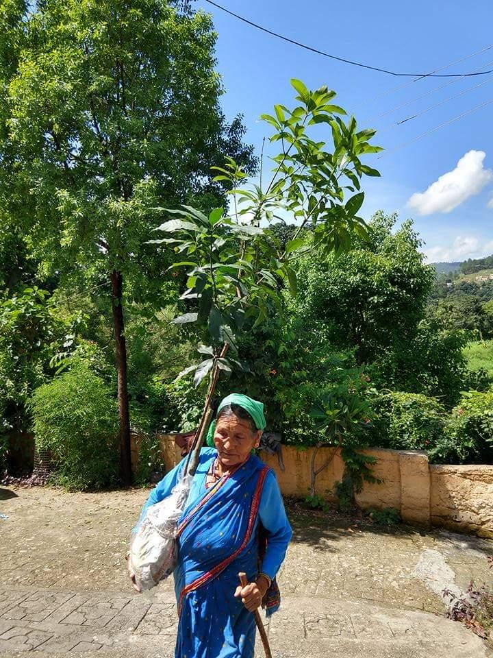 Old Women in Harela Festival