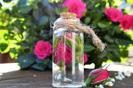 Lips Care: होठों की सुंदरता के लिए सबसे आसान घरेलु उपाय/Easy Home Remedies For Pink Lips, benefits of rose water for getting pink lips