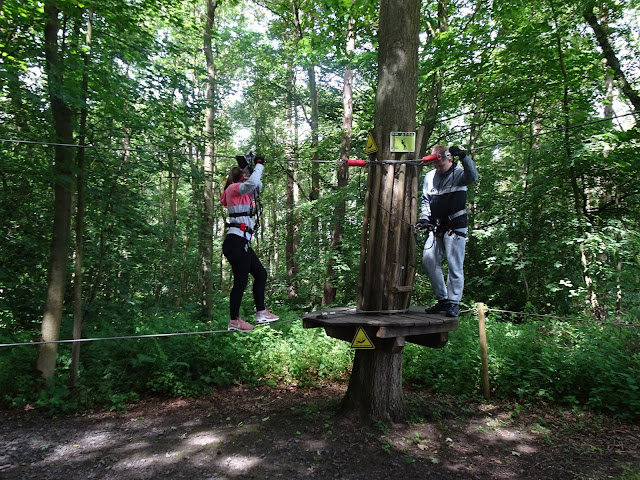 Go Ape small starer high wire