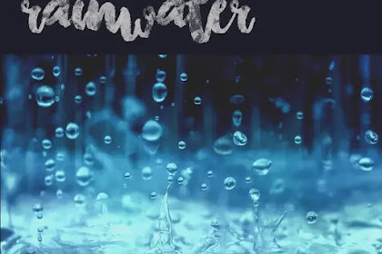 Rainwater Harvesting: How it works? What to do?