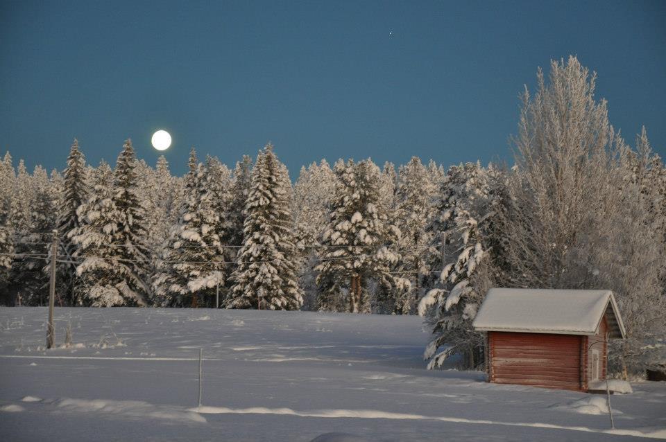 Enontekiön kaamoskamera villitsi suomalaiset – Täältä voit sinäkin ihasteella Pohjois-Lapin lumisia maisemia ja jopa revontulia