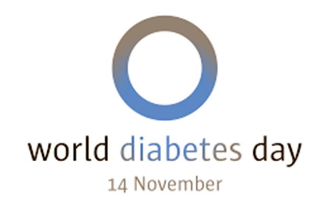 Peringatan Hari Diabetes Seduia - World Diabetes Day