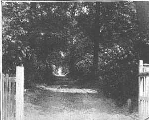 Photograph of the entrance gates to the Home Farm