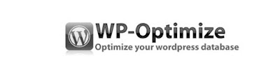 how to install wp-optimize