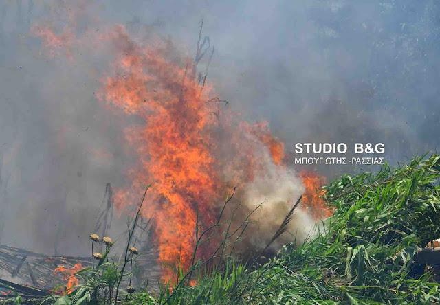Αργολίδα: Μεγάλη κινητοποίηση της πυροσβεστικής για πυρκαγιά στο Λάλουκα