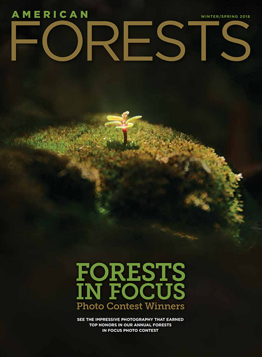 American Forests Magazine Cover
