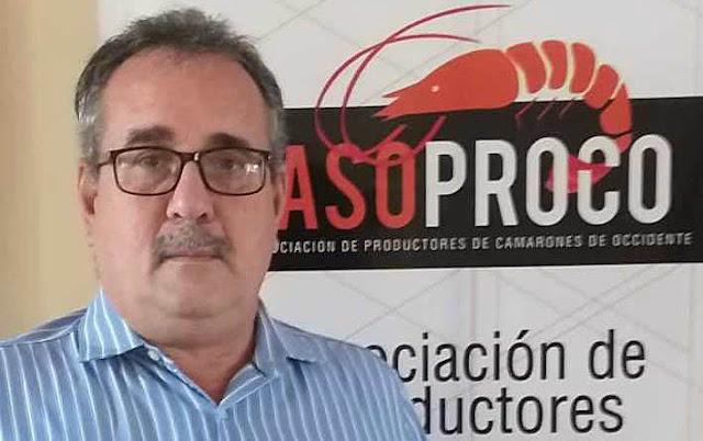 VENEZUELA SE PROYECTA COMO SEGUNDO EXPORTADOR DE CAMARONES DE LATINOAMÉRICA