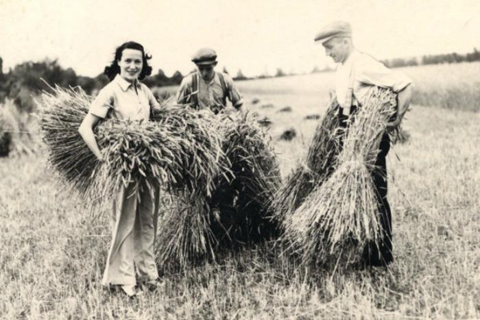 Adele Astaire ayudando en el campo de Chatsworth