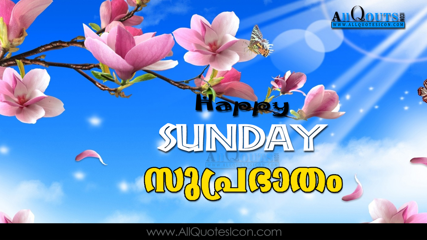Happy sunday images good morning quotes pictures best malayalam malayalam good morning quotes wshes for whatsapp life voltagebd Choice Image