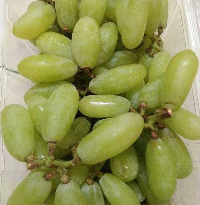 Bibit anggur import banana bisa COD Sabang