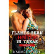 Flames Burn Hotter in Texas Trilogy by Naomi L. Wyatt