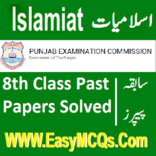 8th Class Punjab Board Objective And Subjective Solved Past Papers Free Download In PDF
