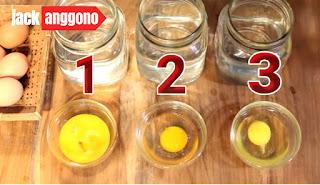 memilih telur yang baik memilih telur untuk ditetaskan,memilih telur ayam,memilih telur ayam yang baik,memilih telur bagus,dalam memilih telur perlu memperhatikan cara memilih kepiting telur,cara memilih kualitas telur yang baik,cara memilih telur untuk kue,kiat memilih telur,cara memilih telur merpati yang bagus,mimpi memilih telur,cara memilih telur asin masir,cara memilih telur untuk masker,memilih telur asin masir,cara memilih telur ayam negeri yang baik,cara memilih telur omega 3,memilih telur puyuh tetas,cara memilih telur puyuh yang bagus untuk di tetaskan,cara memilih telur segar,bagaimana cara memilih telur segar,alasan memilih usaha telur asin,cara memilih telur yang baik untuk di tetaskan,cara memilih telur yang tidak busuk,4 cara memilih telur yang baik