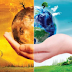 ظاهرة الإحتباس الحراري وخطورته على البشرية