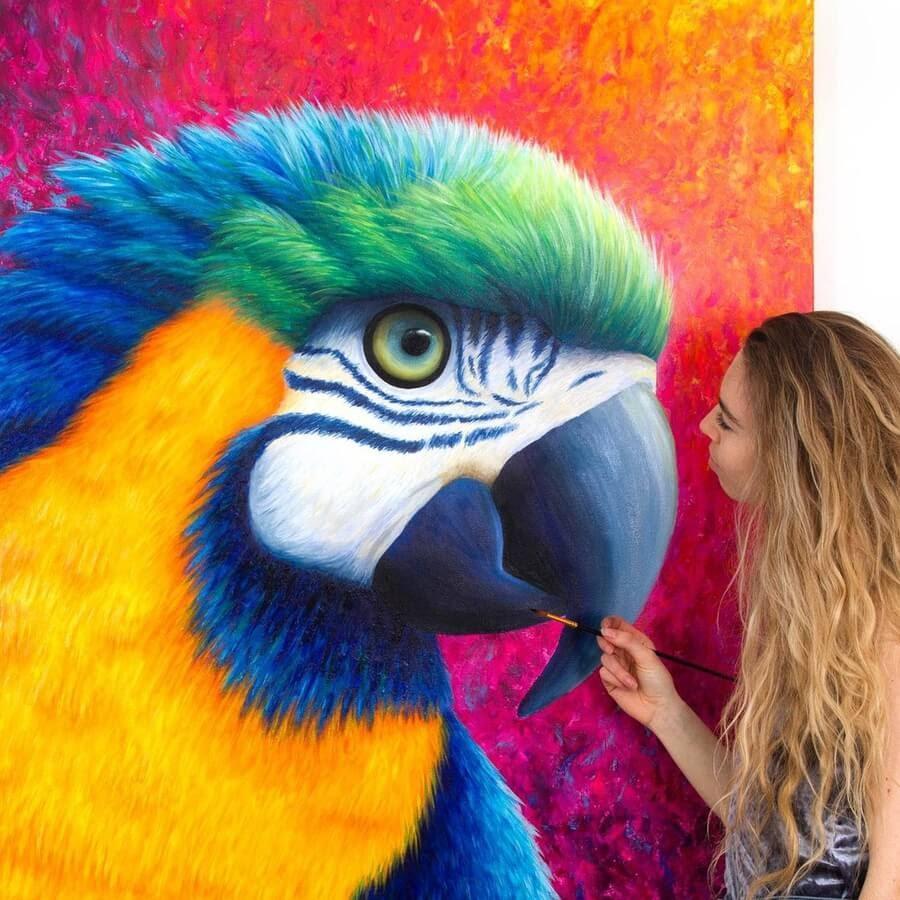01-Parrot-Rachel-Froud-www-designstack-co