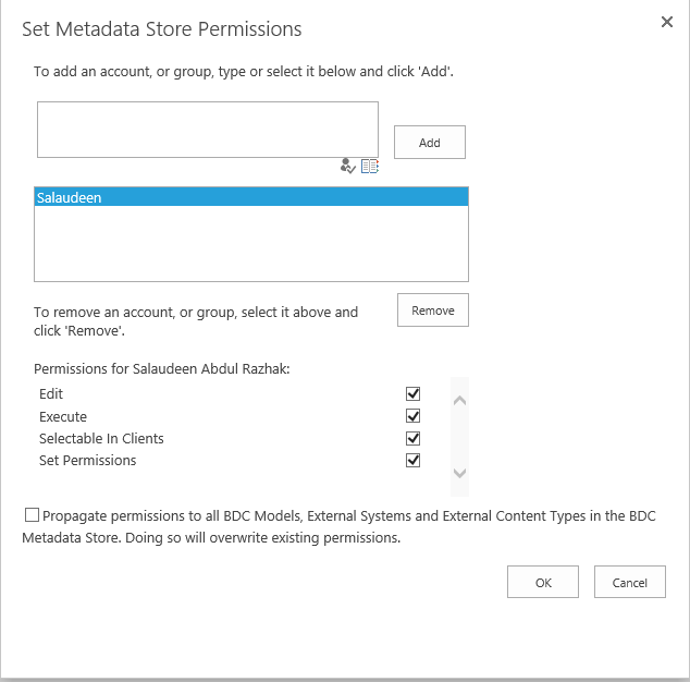 sharepoint 2013 bdc service application