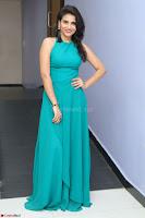 Priya Singh in a sleeveless Green Gown at Manasainodu music launch 011.08.2017 ~ Exclusive Celebrity Galleries 018.JPG