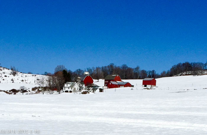 Reb barn in snow in Calicoon, NY