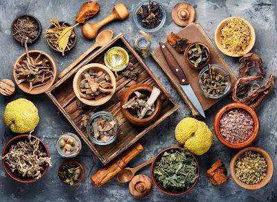 diversas plantas medicinales en cuencos de varios tamaños