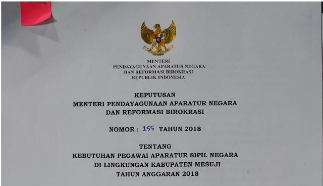 Penerimaan CPNS 2018: PEMKAB Mesuji Buka Penerimaan CPNS