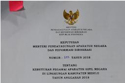 Penerimaan CPNS 2018: PEMKAB Mesuji Buka Penerimaan CPNS, Berikut Informasi Kuota dan Formasinya!