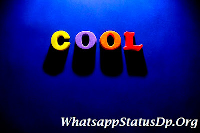 cool-whatsapp-images