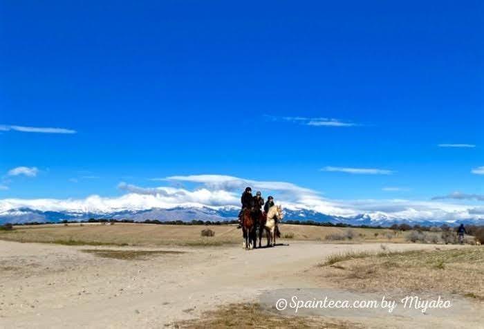 マドリードで青い空と乗馬を楽しむ人たち