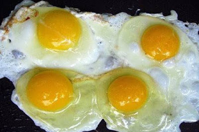 Imitation Eggs, fake eggs