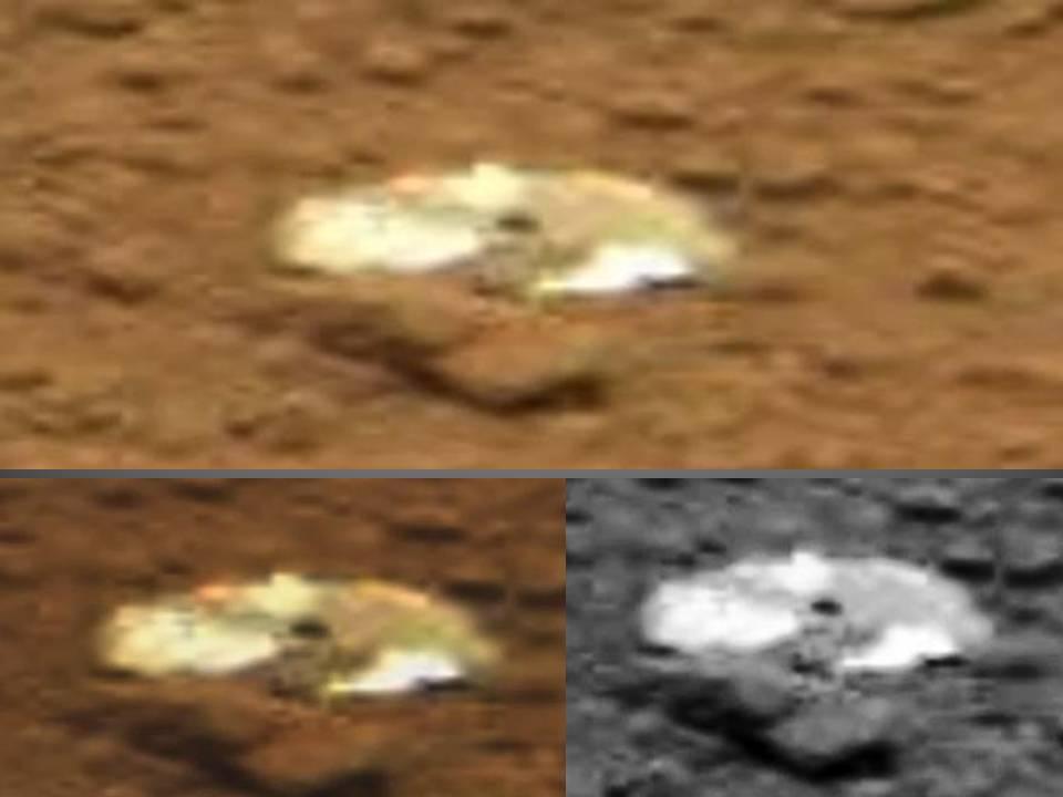 UFO Sightings Hotspot: June 2013